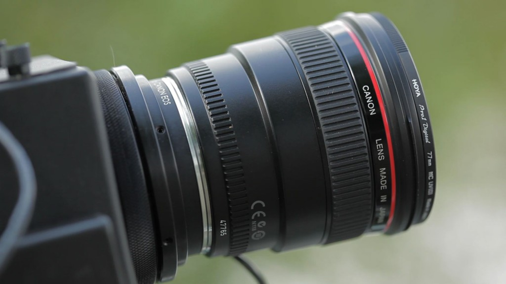 Those Canon lenses are stunning