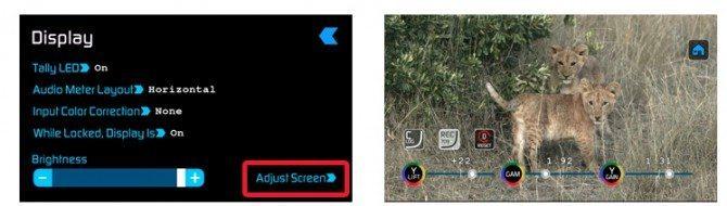 Rec. 709 Screen Adjustments and C-Log