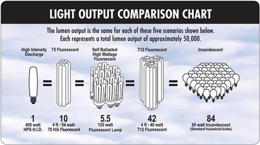 light output chart